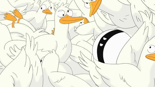 The Cross-Eyed Ducks Car