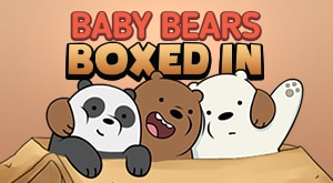 Baby Bears Boxed In